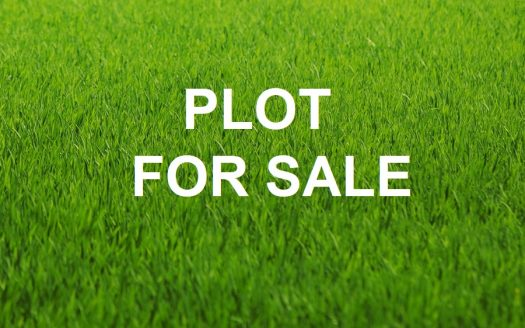 Plot in Arakapas village PLOT FOR SALE 525x328