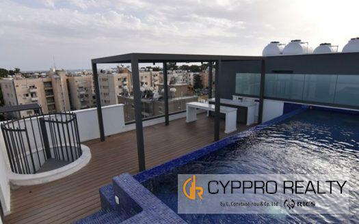 Luxury 3 Bedroom Penthouse in P. Germasogeias Area