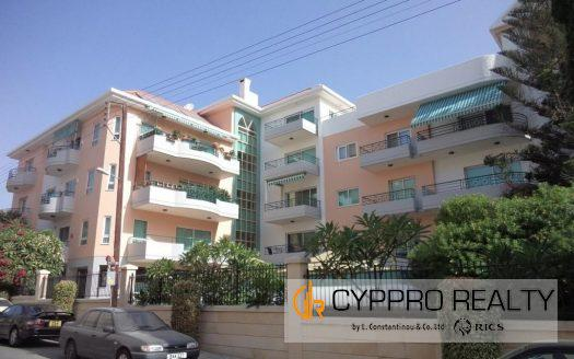 Luxury 3 Bedroom Penthouse + Studio in Katholiki Area